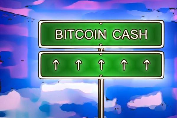 Bitcoin Cash subirá con su uso lo dice Brian Kelly