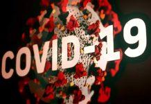 La OMS une esfuerzos para el lanzamiento de plataforma de blockchain contra el COVID-19