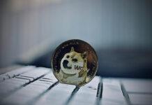 caída de Doge Coin