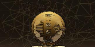 vino funziona trading bitcoin