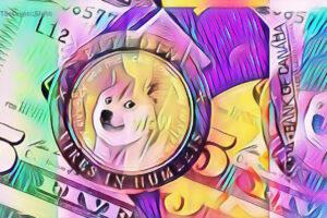 pago en Dogecoin